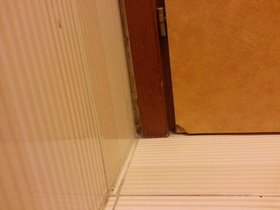 Hotel Pineta Palace : la porta del bagno