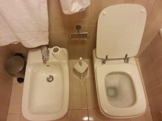Hotel Pineta Palace : il water che quando scarica non pulisce tutta la tazza e il bidet instabile