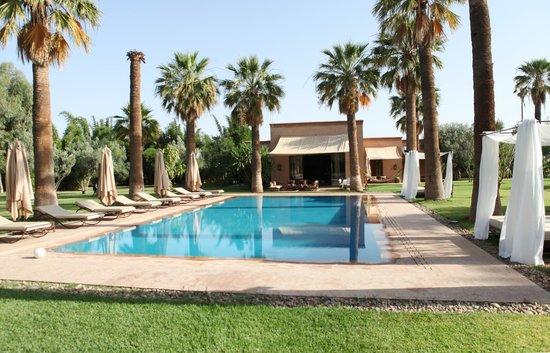 Villa Zin : Piscine