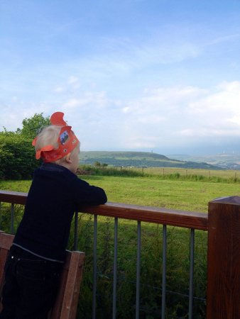 The Pack Horse: View