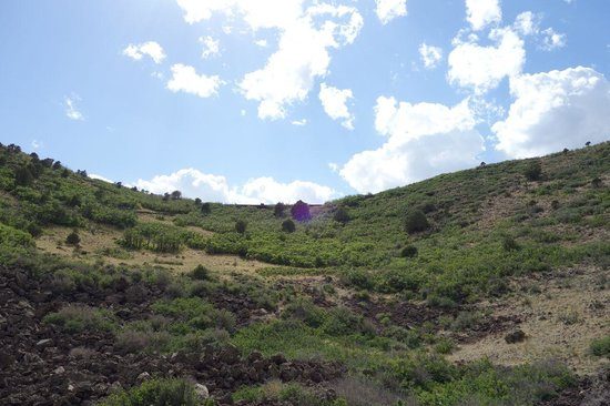Capulin Volcano National Monument: View from inside the crater