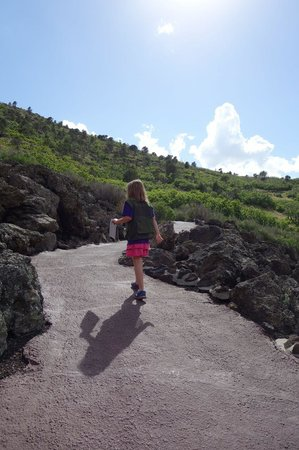 Capulin Volcano National Monument: Paved hiking path from the volcano rim into the crater