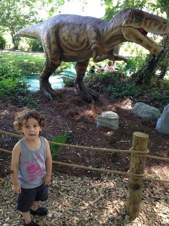 Dutch Wonderland : T-Rex animatronic!