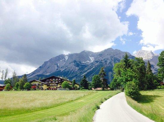 Haus Almfrieden: Lage am Südhang des Dachsteinmassivs