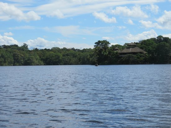 La Selva Amazon Ecolodge: lodge from lagoon
