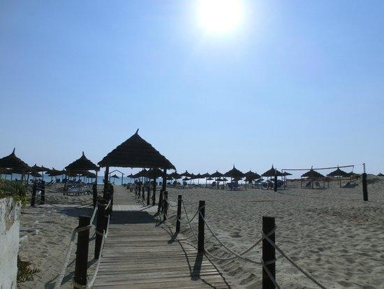 Fiesta Beach Club Djerba : Strand