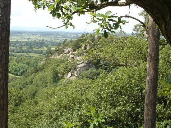 Hawkstone Park Follies: The view over the park