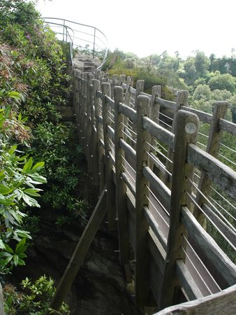 Hawkstone Park Follies: Swiss Bridge, only wide enough to walk one foot in front of another