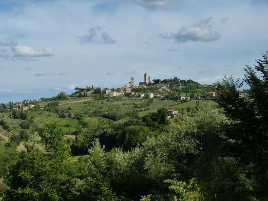Il Vicario: View of San Gimignano