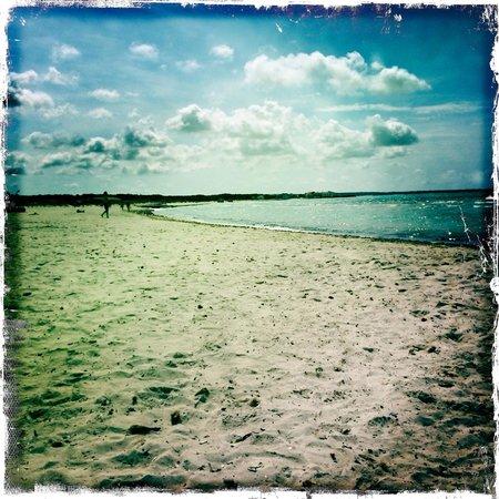 OD Port Portals : Beach
