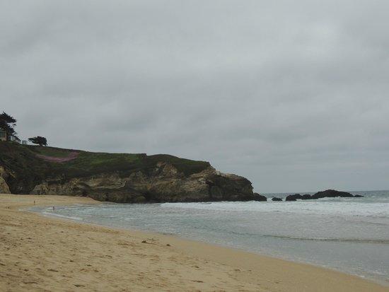Half Moon Bay State Beach : beach