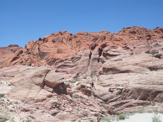 Red Rock Canyon National Conservation Area: red rock canyon