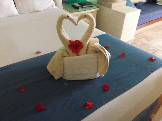 Luxury Bahia Principe Akumal Don Pablo Collection: Towel art