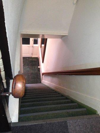 Hotel Adolesce: Scale ripide