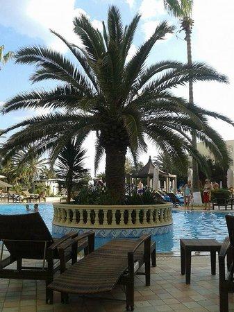 Hotel Paradis Palace: vista piscina