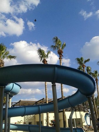 Hotel Paradis Palace: scivolo della piscina