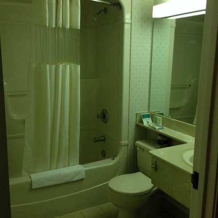 Bathroom, Quality Hotel & Suites Airport East  |  2180 Islington Avenue, Toronto, Ontario M9P 3P