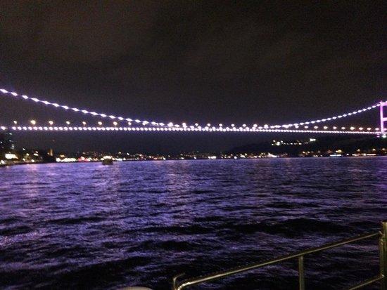 Rose Garden Suites Istanbul: night cruise