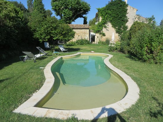 L'Ecole Buissonniere Provence : Pool and yard