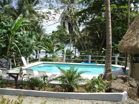 Coconut Grove Oceanfront Cottages: Poolside over looking ocean