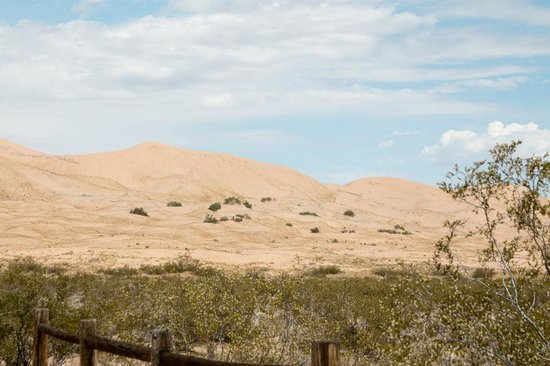 Kelso Dunes: Kelso Sand Dunes