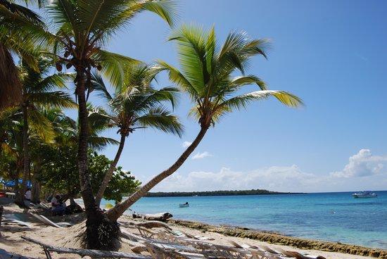 Zoetry Agua Punta Cana: На побережье