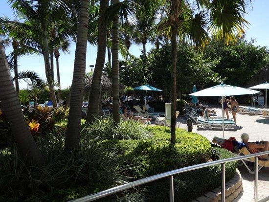 Hotel Riu Plaza Miami Beach: muy buena atencion en el bar de la piscina