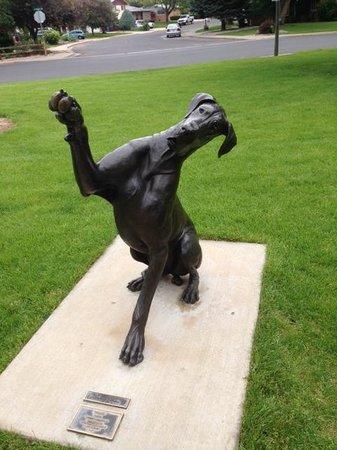 Benson Park Sculpture Garden: The bark beckons - you should go :)