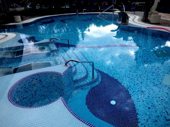 Petrarca Hotel Terme : термальный бассейн с гидромассажем