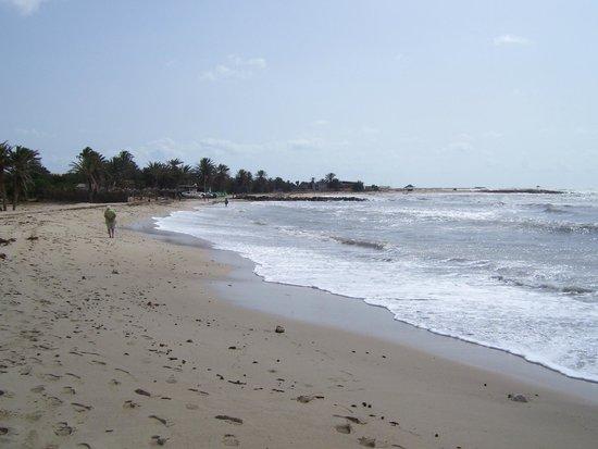 Homere Hotel : local beach
