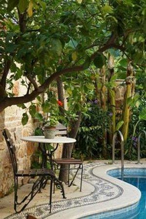 Minyon Boutique Hotel: garden