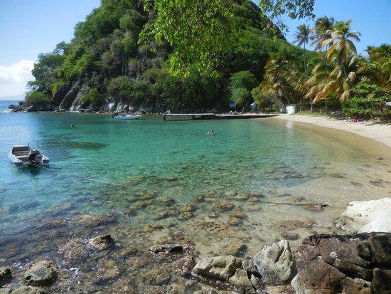 Anse Figuier: Plage du Pain de Sucre