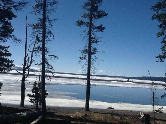 Yellowstone Lake: 3
