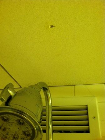 Washington Dulles Airport Marriott: Shower area is old and moldy