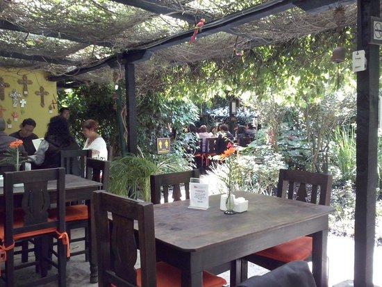 Vivero y cafe la escalonia fotograf a de vivero y cafe de for Vivero de cafe pdf