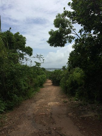 Дорога к Jungle Beach не из легких!
