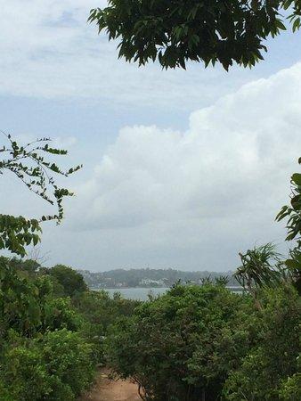 Дорога к Jungle Beach не самая простая, но невероятно живописная