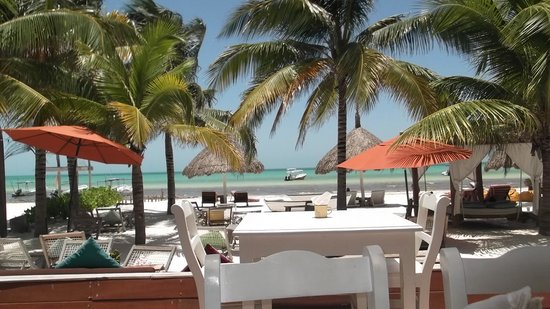 Holbox Hotel Casa las Tortugas - Petit Beach Hotel & Spa: View from the restaurant