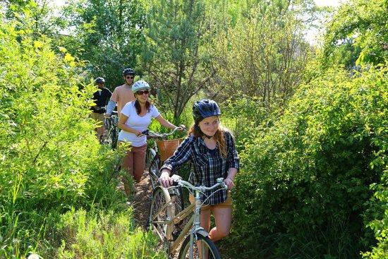The Pedaler Victoria By Bike: Hidden Gem