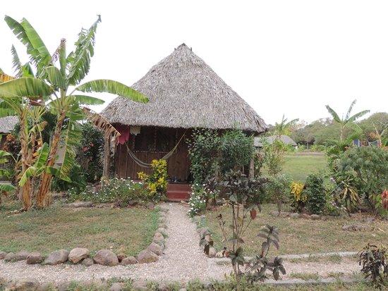 El Coco Loco Resort : One of the cabanas