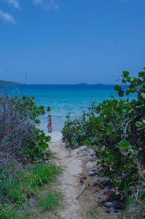 Zoni Beach : Entrance to zoni