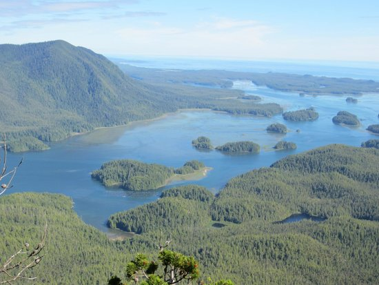 great view picture of lone cone hike tofino tripadvisor. Black Bedroom Furniture Sets. Home Design Ideas