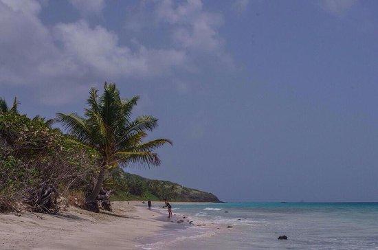 Playa Flamenco: Flamenco afternoon