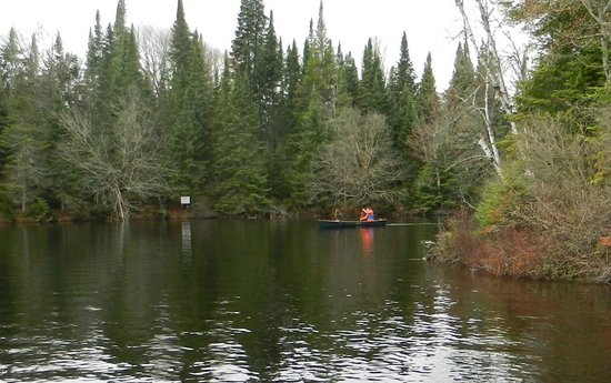 Algonquin's Hemlock Point : Canoeing!