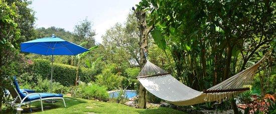 Organic garden in Casa de la Vida