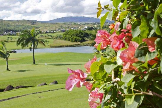 Heritage Awali Golf & Spa Resort : golf area