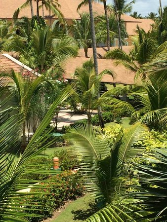 Majestic Elegance Punta Cana: The view from our balcony.