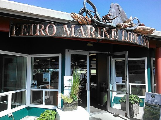 ‪Arthur D. Feiro Marine Life Center‬