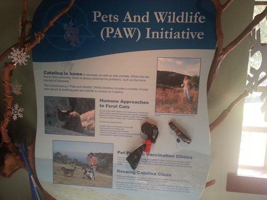 Santa Catalina Island Interpretive Center: informative display
