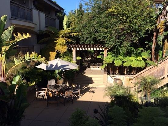 Tradewinds Carmel: yard